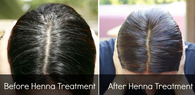 Henna natural gray hair reversal before and after pictures